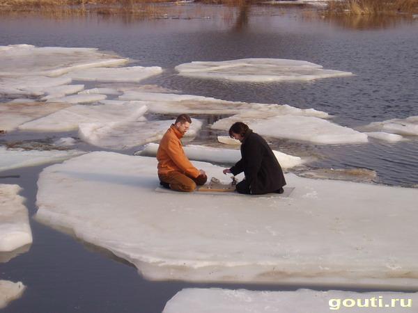 Го на льдине. Вот такое вот фусеки, брат...