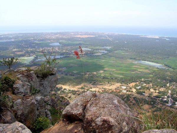 Гора Ханумана. В противоположную сторону виден Каньякумари и если присмотреться - статуя Тирувалувара